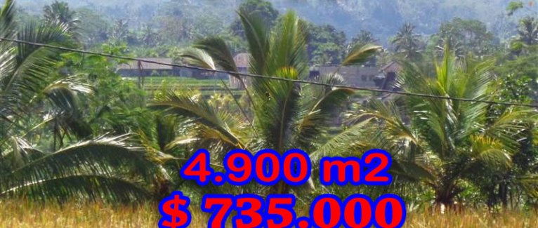 Land for sale in Ubud Bali 4.900 sqm in Ubud Tegalalang