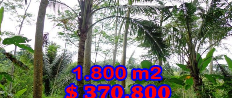 Affordable 1.800 sqm Land in Ubud Bali For sale
