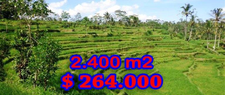 Land for sale in Ubud Bali 2.400 sqm in Ubud Tampak siring