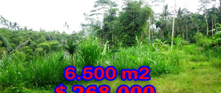 Stunning Land for sale in Bali, River View in Ubud Bali – TJUB241
