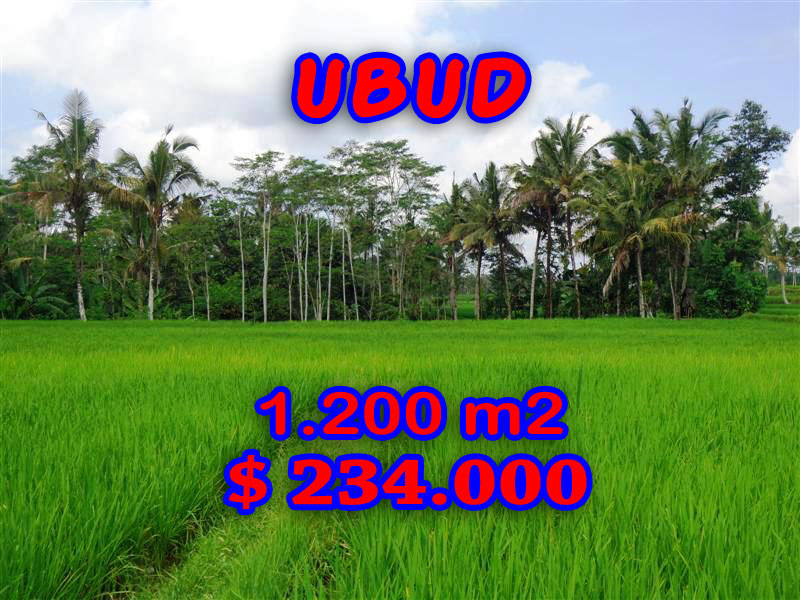 Land for sale in Ubud Bali terraced paddy view – TJUB226