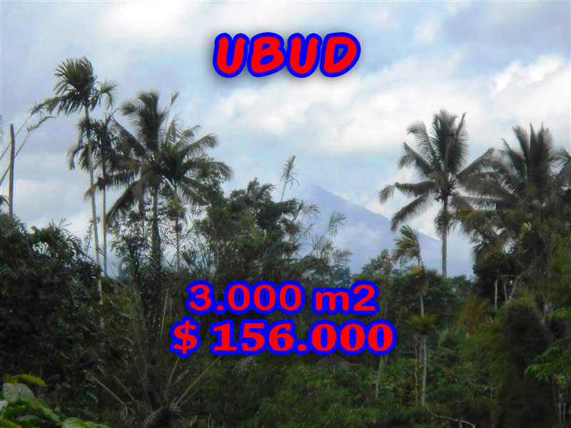 Land for sale in Bali 30 Ares By the river valley in Ubud Payangan