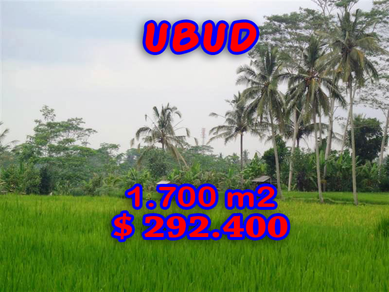 Land in Ubud Bali For sale 17 Ares with By the roadside