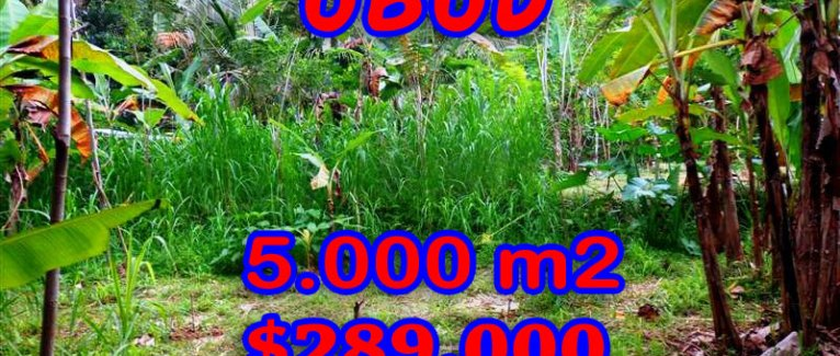 FantasticLand for sale in Bali, River side  in Ubud Tegalalang – TJUB256