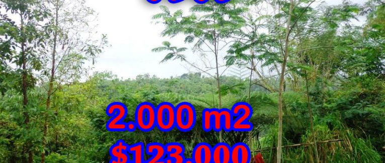 Land for sale in Bali, astonishing view in Ubud Tegalalang Bali – TJUB248