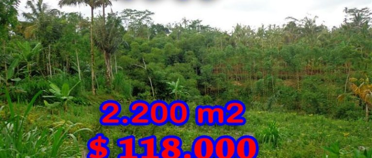 Land for sale in Bali, exceptional view in Ubud Pejeng – TJUB252