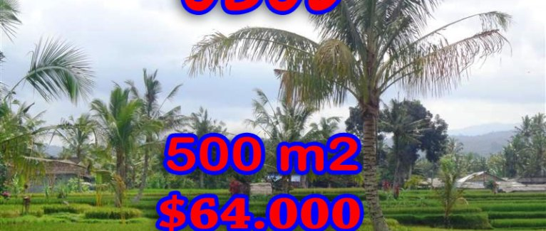 Land for sale in Bali, fabulous view in Ubud Tegalalang  – TJUB257