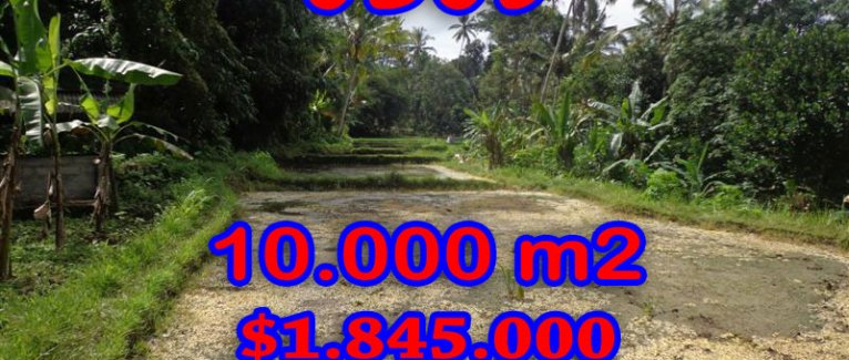 Land for sale in Bali, spectacular view in Ubud Bali – TJUB258