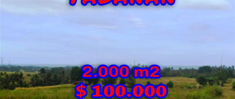 Fantastic Land for sale in Bali, terraced rice fields view in Tabanan Tanah Lot – TJTB057