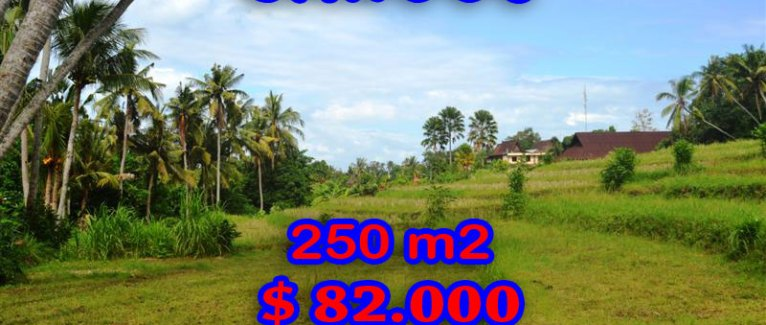 Exceptional Property in Bali, Land for sale in Canggu Bali – TJCG115