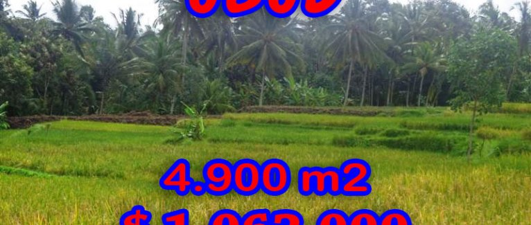Land for sale in Bali, spectacular view in Ubud Bali – TJUB278