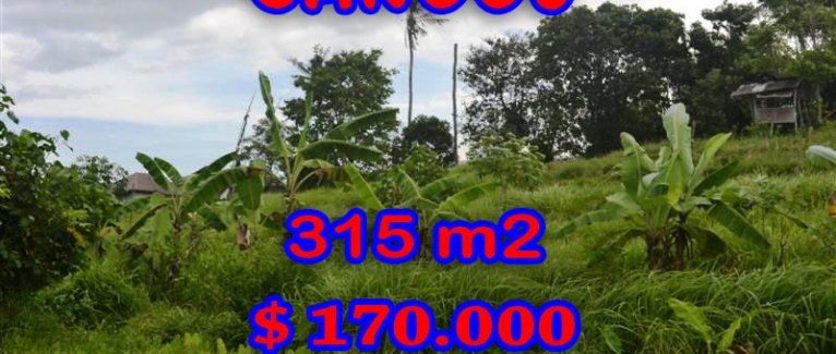 Magnificent Land for sale in Bali, Rice fields view in Canggu Berawa Bali – TJCG112