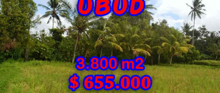 Magnificent Land for sale in Bali, rice fields view in Ubud Pejeng Bali – TJUB271