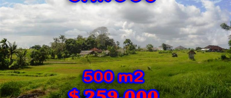 land in Bali for sale, fantastic view in Canggu Bali – TJCG116