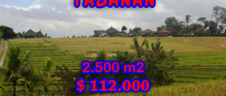 Land in Bali for sale, fantastic view in Tabanan Bali – TJTB056