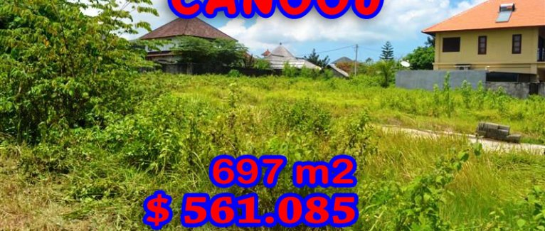 Spectacular Property for sale in Bali, land for sale in Canggu Bali  – 697 sqm @ $ 806