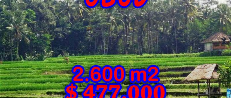 Land in Bali for sale, stunning view in Ubud Tampak Siring – TJUB266