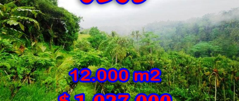 Stunning Property for sale in Bali, land for sale in Ubud Bali  – 12.000 sqm @ $ 86