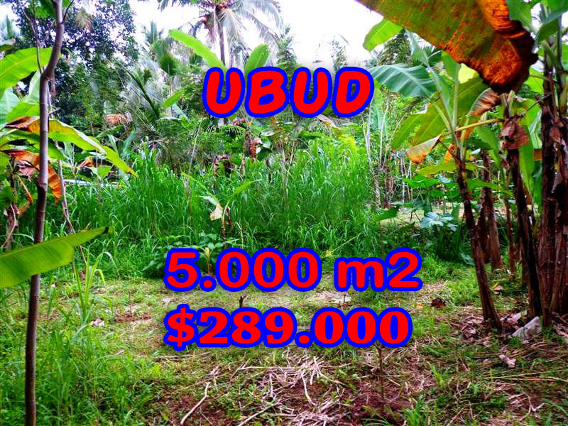 Astonishing Property in Bali, Land in Ubud Bali for sale – TJUB256