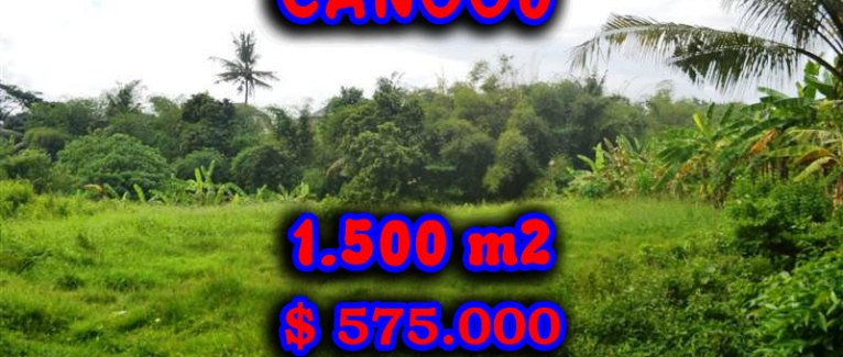 Land for sale in Bali, Extraordinary River View in Canggu pererenan – TJCG104