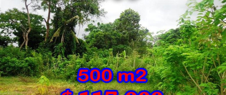 Land for sale in Bali, Amazing rice fields view in Ubud Center – TJUB283