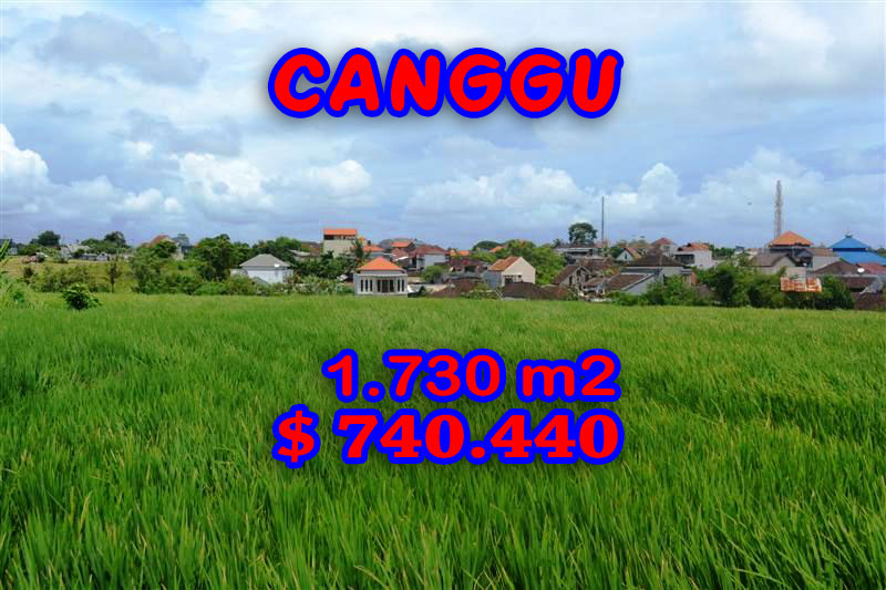 Bali Land for sale, Magnificent Rice fields view  in Canggu Echo Beach – TJCG095