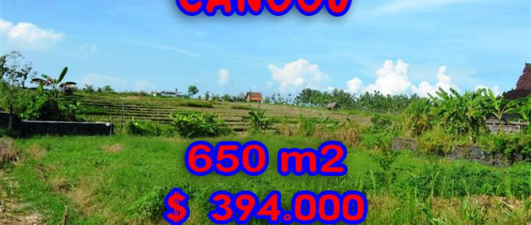 Land for sale in Bali Indonesia, Spectacular Rice fields view in Canggu Batu Bolong – TJCG106