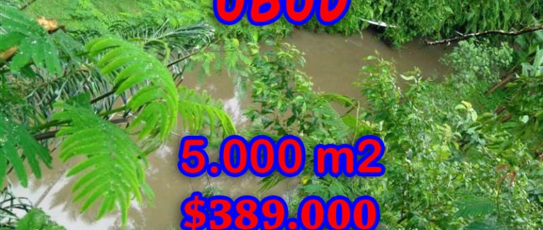Magnificent Property for sale in Bali, land for sale in Ubud Bali – 5.000 sqm @ $ 78