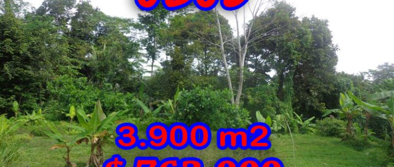 Fantastic Land in Bali for sale, Amazing river view in Ubud Tampak Siring – TJUB276