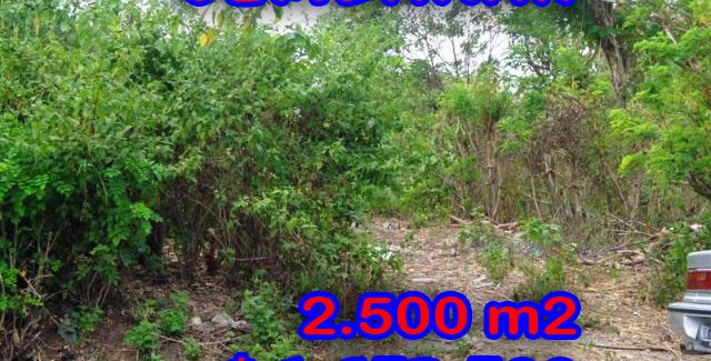 Spectacular Property for sale in Bali, land for sale in Jimbaran Bali  – 2.500 m2 @ $ 661