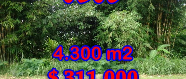 Land in Bali for sale, extraordinary view in Ubud Tegalalang – TJUB294