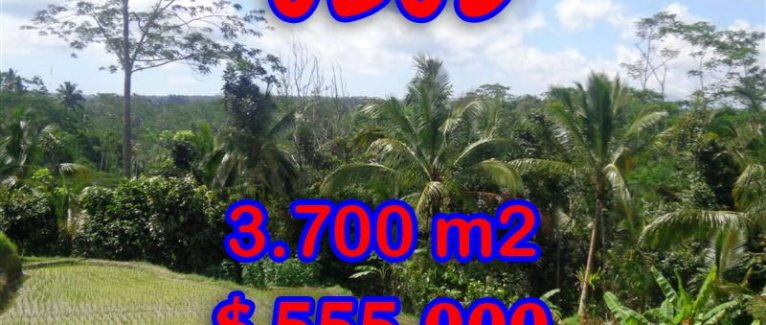 Land in Bali for sale, extraordinary view in Ubud Tegalalang – TJUB293