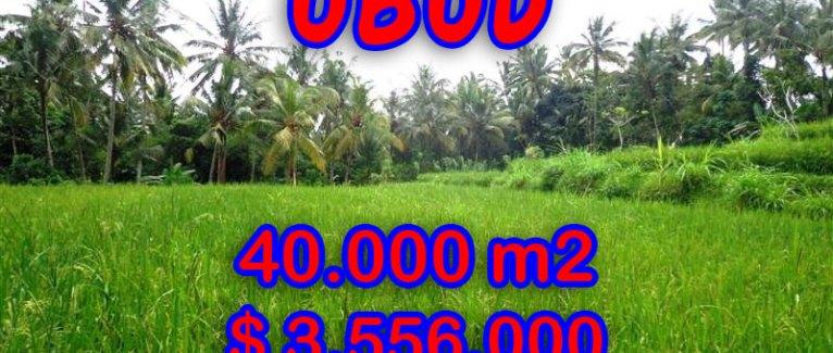 Land for sale in Bali, Fantastic view in Ubud Tampak siring – TJUB269