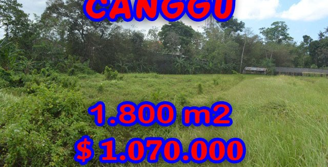 Land for sale in Bali, spectacular view in Canggu Bali – TJCG119