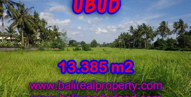 Land for sale in Bali, Fantastic view in Central Ubud – TJUB357