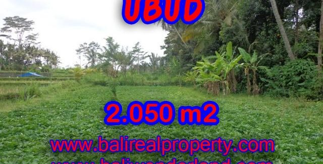 Land in Bali for sale, great view in Ubud Bali – TJUB344