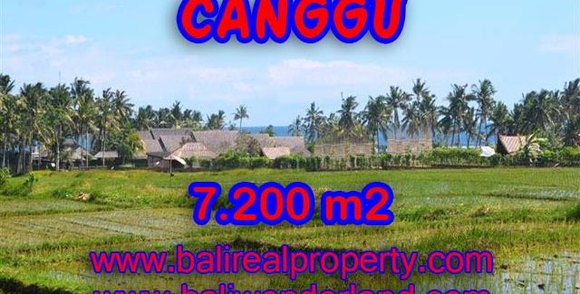 Property in Bali for sale, Spectacular land for sale in Canggu Bali  – 7,200 sqm @ $ 639