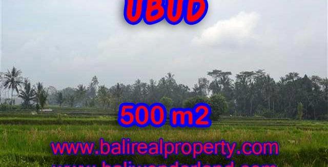 Land for sale in Bali, wonderful view in Ubud Bali – TJUB363