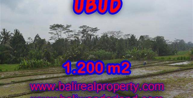 Land in Bali for sale, Outstanding view in Ubud Payangan Bali – TJUB360