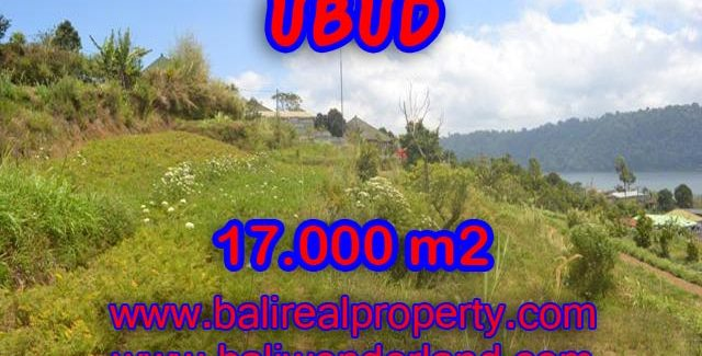 Land in Bali for sale, great view in Tabanan Bali – TJTB082