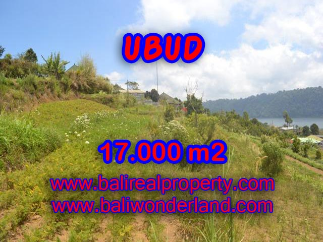 Land in Bali for sale, great view in Tabanan Bali – TJTB082