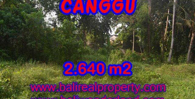Bali Property for sale, Stunning land for sale in Canggu Bali  – 2.640 sqm @ $ 328