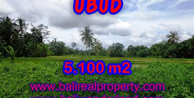 Land in Bali for sale, attractive view in Ubud Tegalalang Bali – TJUB368