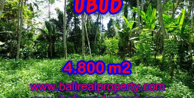 Land in Bali for sale, great view in Ubud Bali – TJUB382