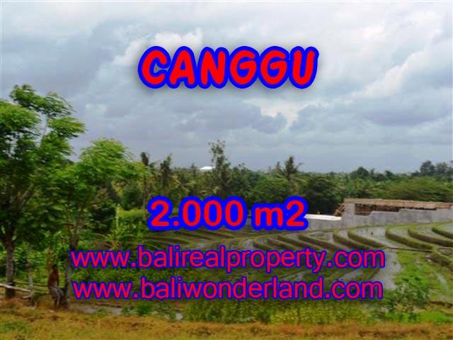 Land for sale in Bali, exotic view in Canggu Babakan Bali – TJCG133