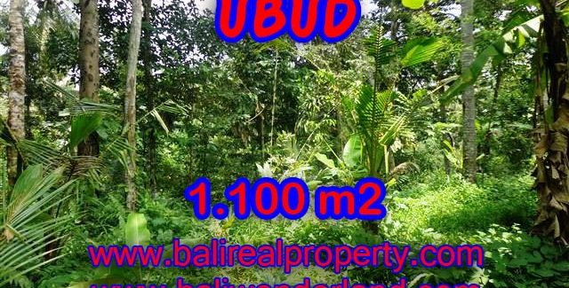 Land in Bali for sale, Outstanding view in Ubud Tampak siring Bali – TJUB378