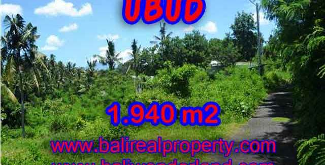 Stunning Land for sale in Bali, rice field, mountain and river view in Ubud Bali – TJUB379
