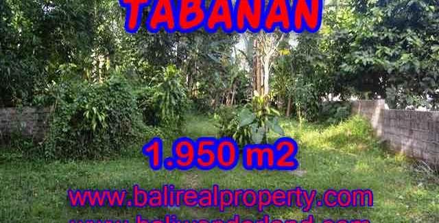 Beautiful Property for sale in Bali, LAND FOR SALE IN TABANAN Bali – TJTB130