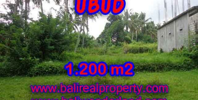 Exotic Property for sale in Bali, LAND FOR SALE IN UBUD Bali – TJUB399