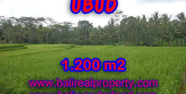 Excellent Property for sale in Bali, land for sale in Ubud Bali – TJUB400